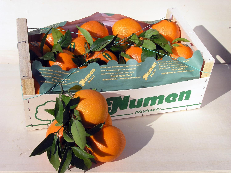 Numen Nature verpackt